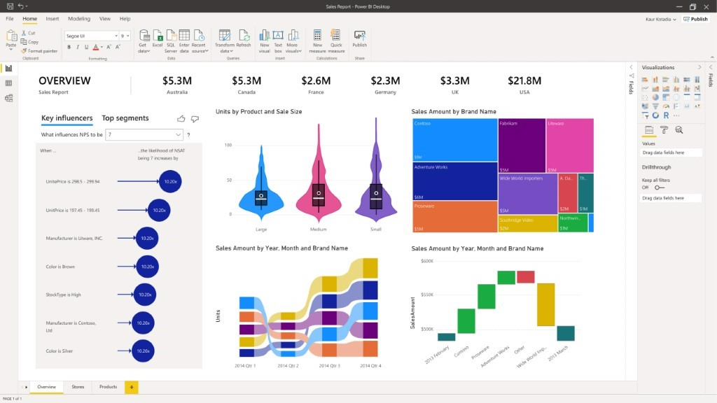 Data Visualization | Microsoft Power BI